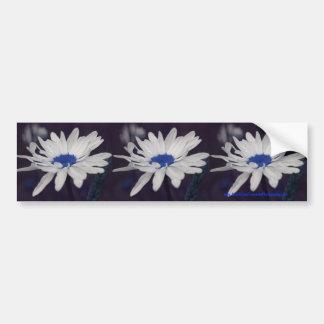 Daisy Blue Center Flower Bumper Sticker Car Art
