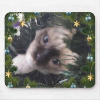 Daisy Blue Christmas Mousemat edition Mouse Pad
