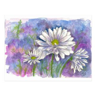 Daisy Bouquet Painting Postcard
