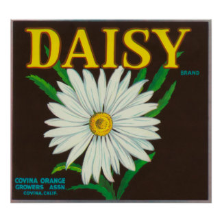 Daisy Brand Citrus Crate Label Poster