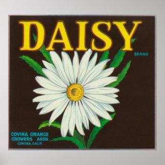 Daisy Brand Citrus Crate Label Print