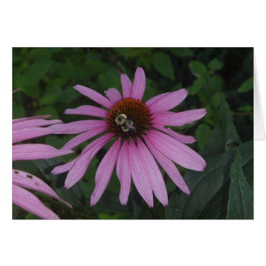Daisy Bumble Card