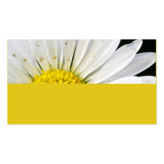 Daisy Double-Sided Standard Business Cards (Pack Of 100)