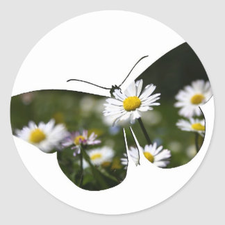 Daisy Butterfly Collage Classic Round Sticker