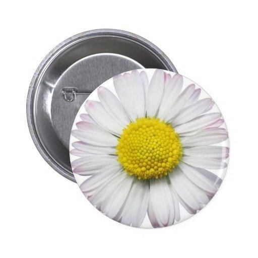 Daisy Button