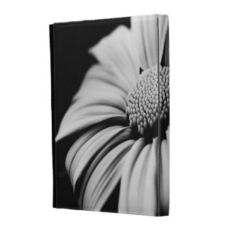 Daisy iPad Folio Cases