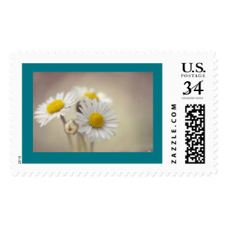 Daisy Chain Stamp