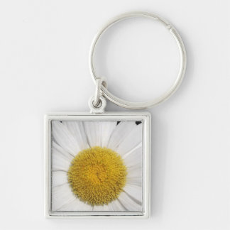 Daisy Close-Up Keychains