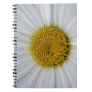 Daisy close up spiral note book