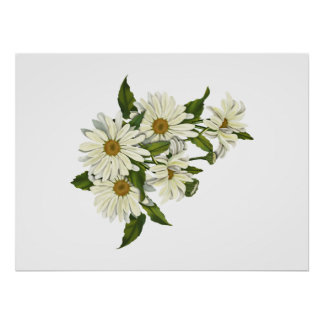 Daisy Cluster Posters