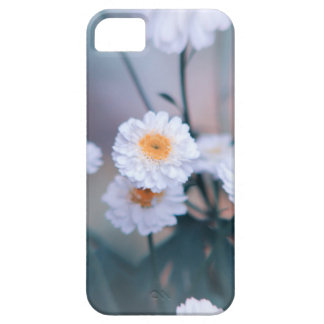 Daisy crazy iPhone SE/5/5s case