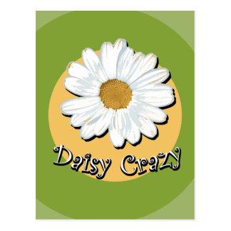 Daisy Crazy Postcard