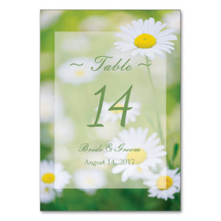 Daisy Daisies Flower Floral Summer Table Number