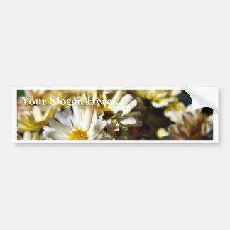 Daisy Daisies Flowers Bumper Sticker