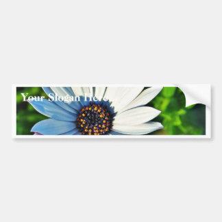 Daisy Daisies Flowers Petals Bumper Stickers
