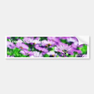 Daisy Daisies Flowers Purple Bumper Stickers