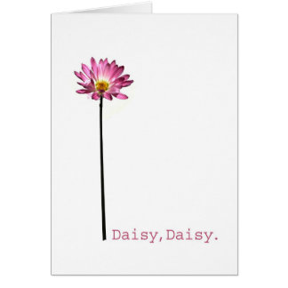 Daisy,Daisy Card