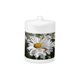 Daisy Daisy Teapot
