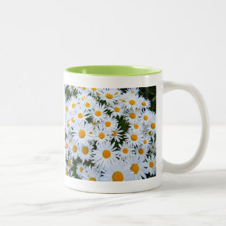 Daisy Days Two-Tone Coffee Mug