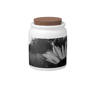 Daisy Delights Candy Jars
