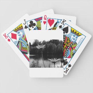 Daisy Delights Poker Cards