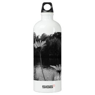 Daisy Delights Water Bottle