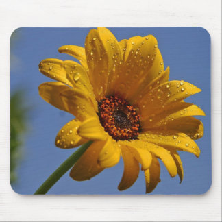 Daisy Dew Mouse Pad
