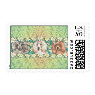 Daisy Dogs Toy Poodles Postage