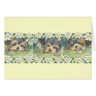 Daisy Dogs Yorkie Puppies Stationery Note Card