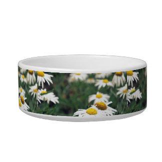 Daisy Field Bowl