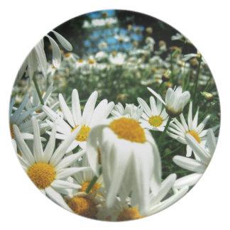 Daisy Field Melamine Plate