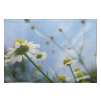 Daisy Field Placemat Cloth Placemat