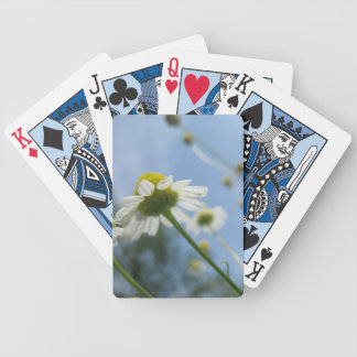 Daisy Field Playing Cards