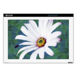 Daisy Flower and meaning Skin For Laptop
