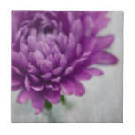 Daisy Flower ceramic tile in Purple and grey