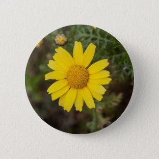 Daisy flower cu yellow button