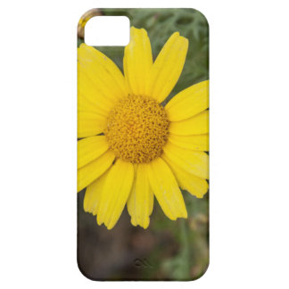 Daisy flower cu yellow iPhone SE/5/5s case