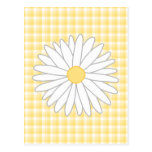 Daisy Flower in Yellow and White. Post Card