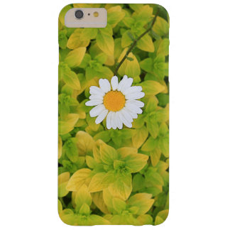 Daisy Flower Reaching For The Sun Barely There iPhone 6 Plus Case