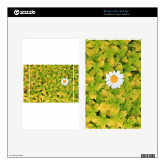 Daisy Flower Reaching For The Sun Kindle Fire Skins