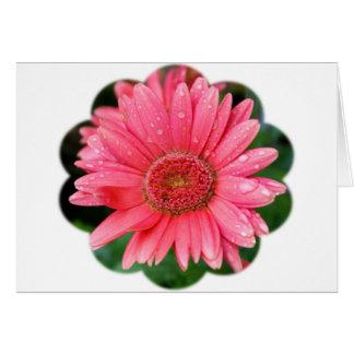 Daisy Flower Shape Card