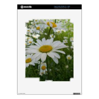 Daisy Flower Decal For iPad 2