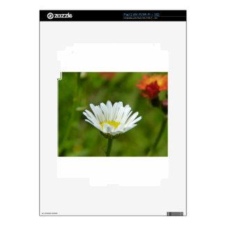 Daisy Flower Skin For iPad 2