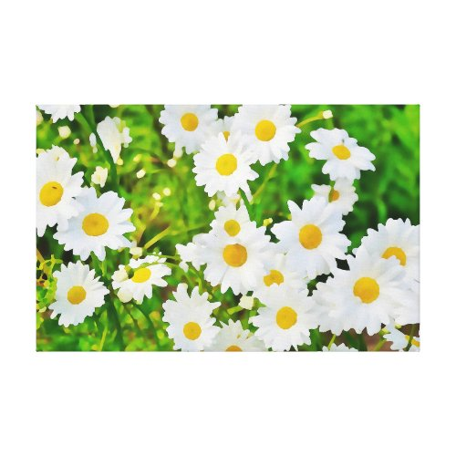 Daisy Flower Spring Marguerite Canvas Print