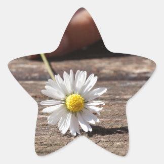 Daisy Flower Star Sticker