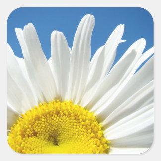 Daisy Flower Stickers custom Add Your Text
