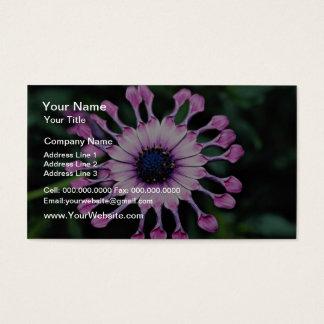 Daisy  flowers business card