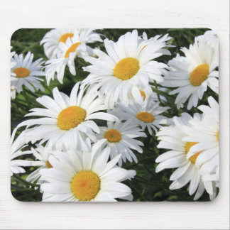 Daisy Flowers Growing White Mouse Pad