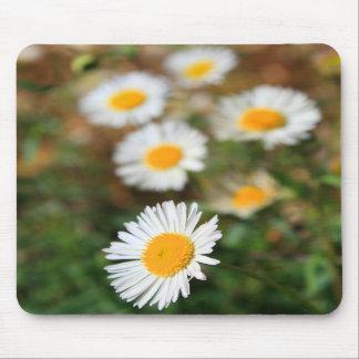 Daisy Flowers Mousepad