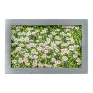Daisy flowers rectangular belt buckle